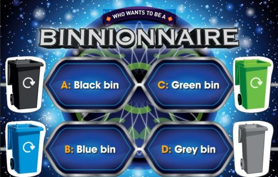 Preview of binnionaire game