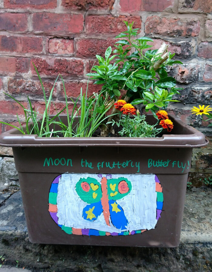 Brown recycling box decorated with a drawing of butterfly with plants growing out of the box
