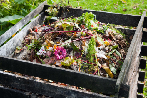 Mix of food and garden waste in a wooden crate