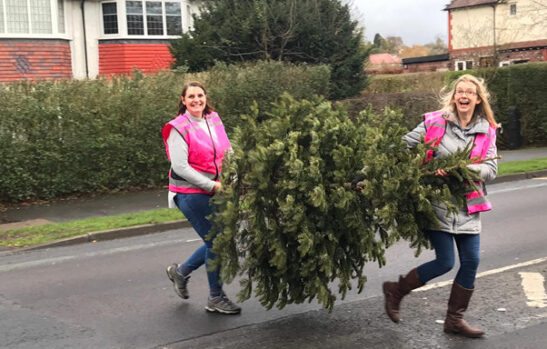 Two women carrying a Christmas tree over the road